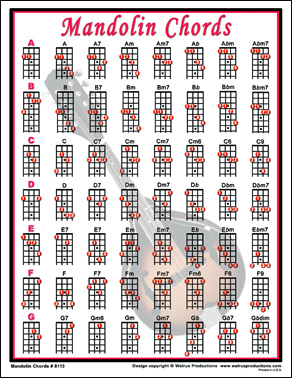 Mandolin chords laminated chart for mandolin players printed
